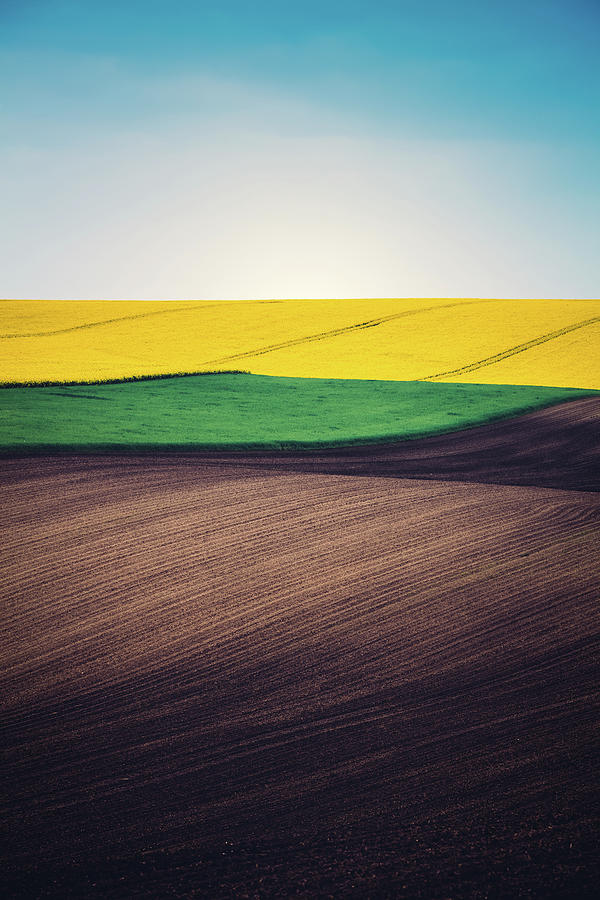 Layers Of Colorful Field Photograph by Borchee