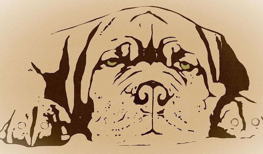 Mastif Digital Art - Lazy Dog by Cindy Edwards