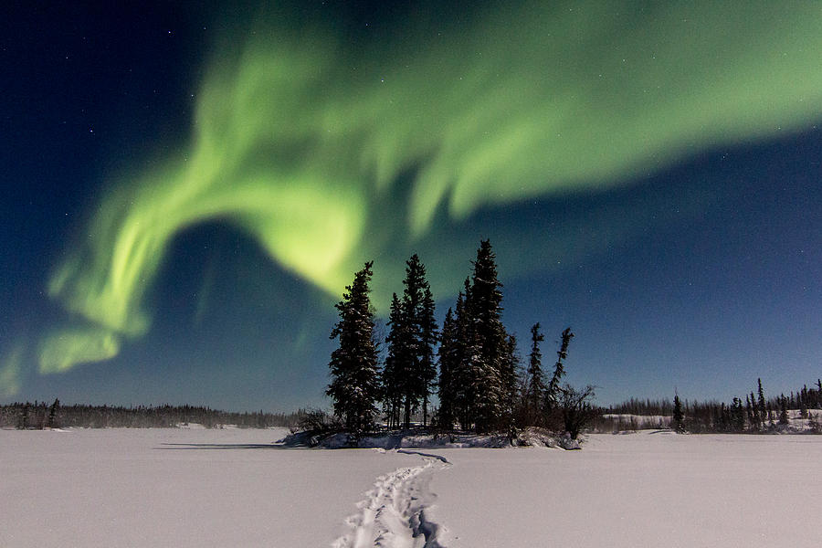 Aurora Borealis Photograph - Leading The Way by Valerie Pond