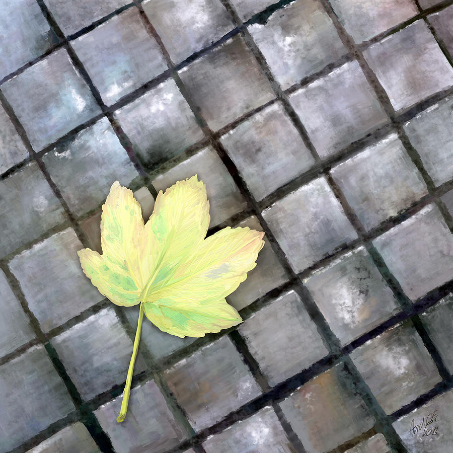 Leaf Digital Art - Leaf On Ground by Ondrej Kollar