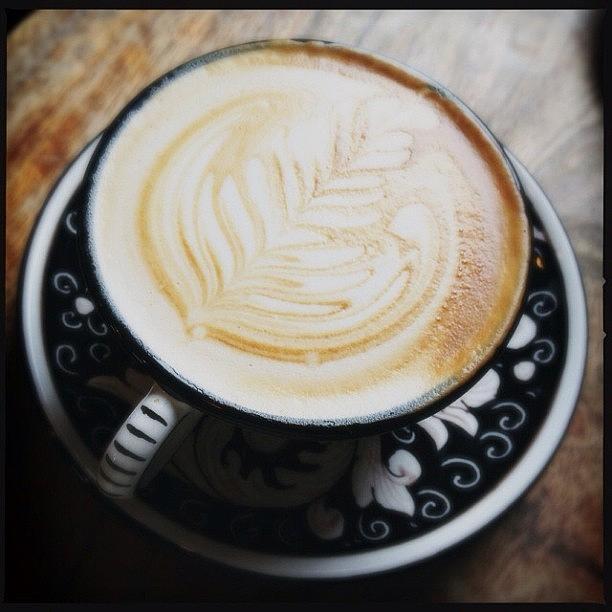 Coffee Photograph - Leafy Latte by Jan Pan
