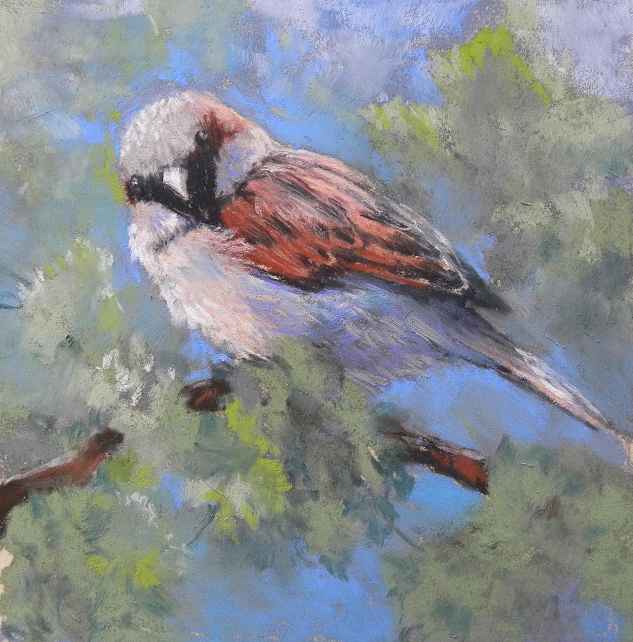 Sparrow Painting - Leafy Perch by Jackie Simmonds