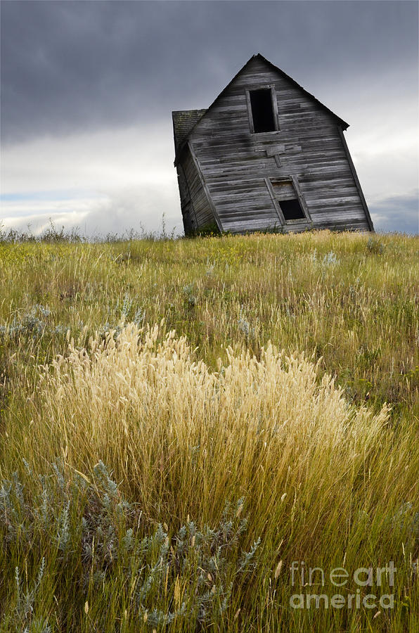 Homestead Photograph - Leaning A Little by Bob Christopher