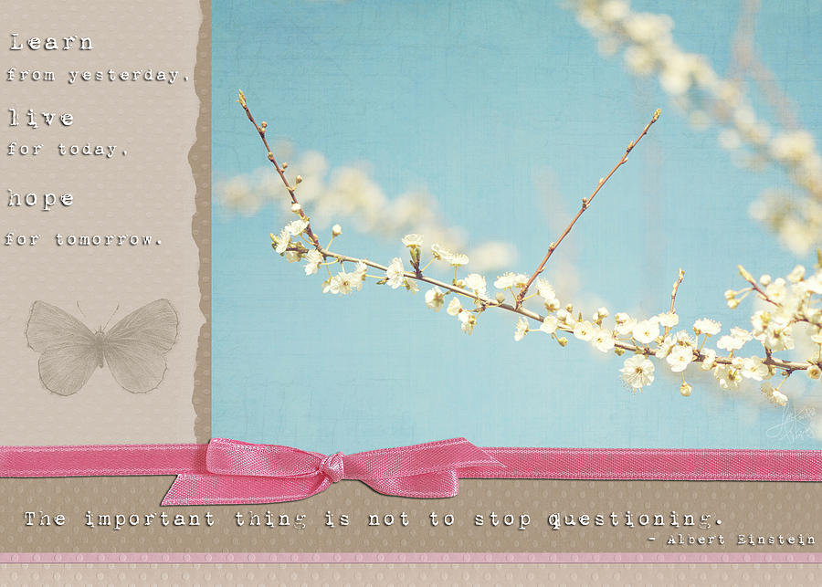 Scrapbook Photograph - Learn Live And Hope by Lisa Knechtel