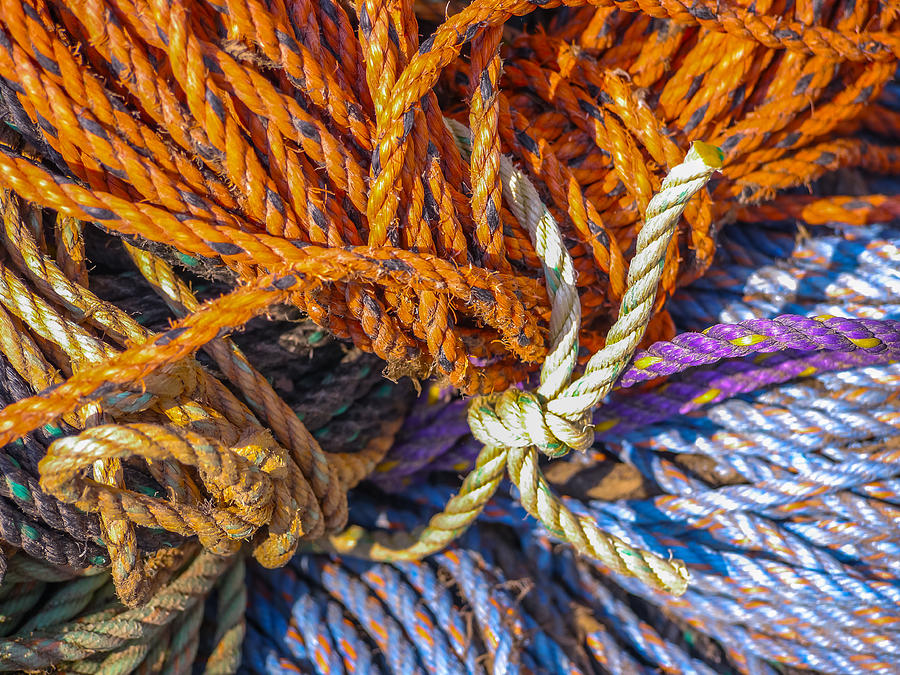Ropes Photograph - Learn The Ropes by Ernest Puglisi