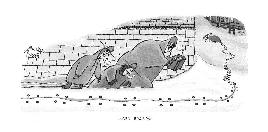 Learn Tracking Photograph by Arnold Roth