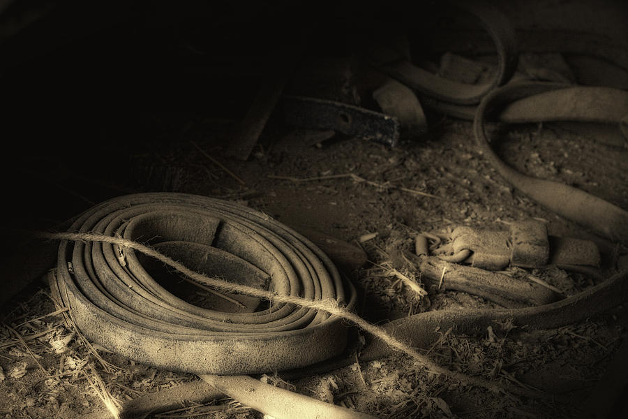 Leather Photograph - Leather Strap Still Life by Tom Mc Nemar