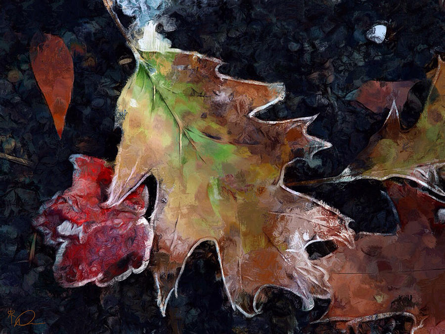 Leaves Digital Art - Leaves And Frost by David Derr