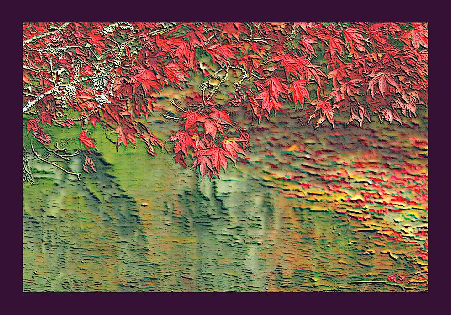 Maple Leaves Red Leaf Float Floating On Water The Creek Stream Creeks Streams Autumn Fall September Oct Sept October Nov December Dec November Rural Country Scene Scenes Scenic Scenery Fresh Water Flowing Watershed Tributary Outdoors Outside Nature Natural Pasture Landscape Pastures Pasturing Pastured Meadow Meadows Violet Border Pond Ponds Lake Lakes Rock Rocks Stone Stones Stoned Algae Plankton Zooplankton Phytoplankton Microscopic Tiny Little Miniscule   Photograph - Leaves On The Creek 3 With Small Border 3 by L Brown