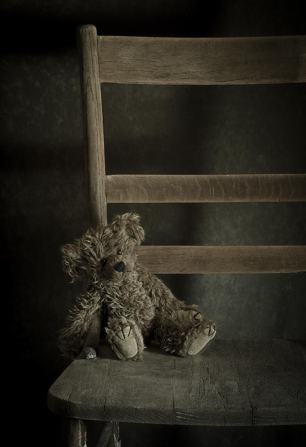 Bear Photograph - Left Behind by Amy Weiss