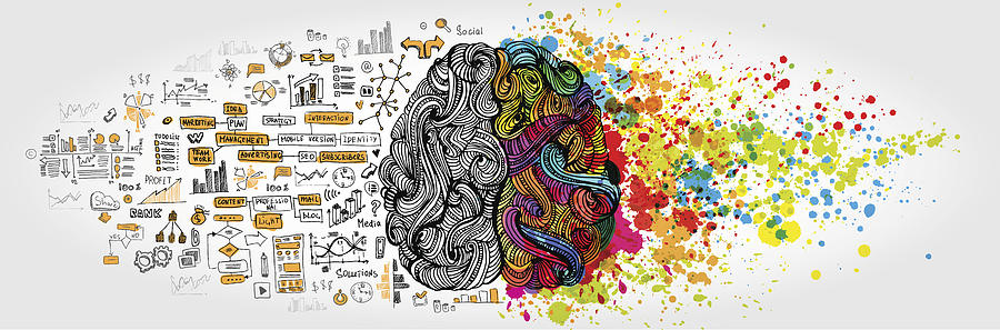 Left right human brain concept. Creative part and logic part with social and business doodle Drawing by LisaAlisa_ill