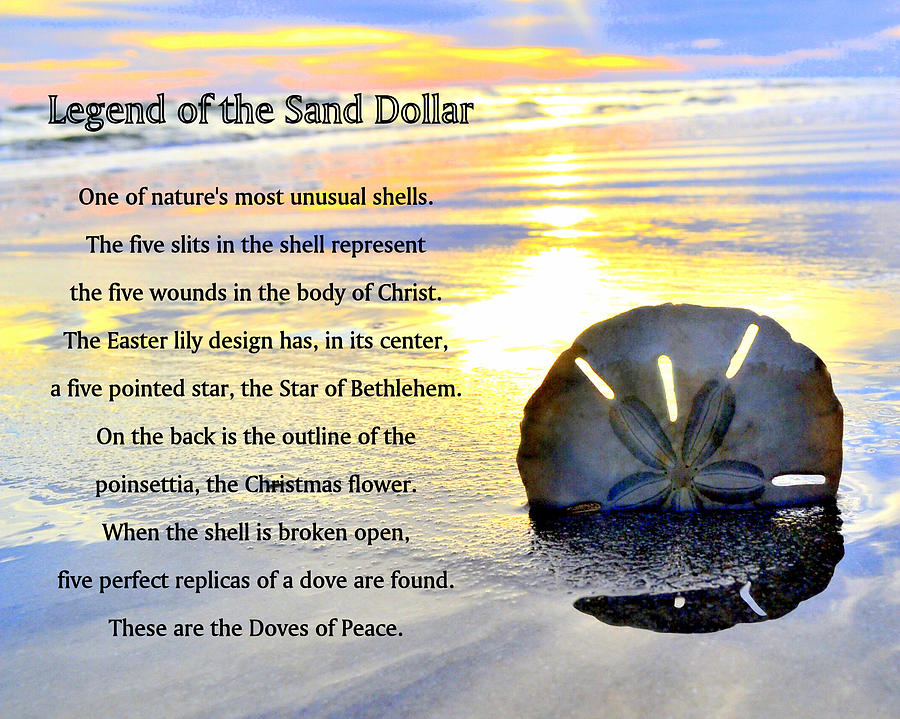This is a graphic of The Legend of the Sand Dollar Printable with meaning
