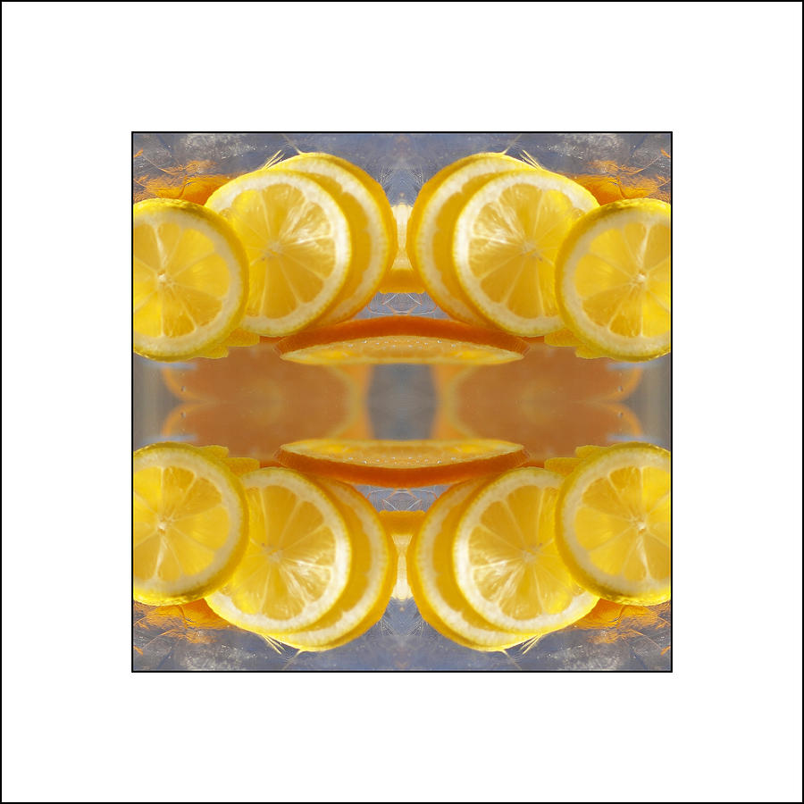 Lemons Photograph - Lemon Drop by Don Powers