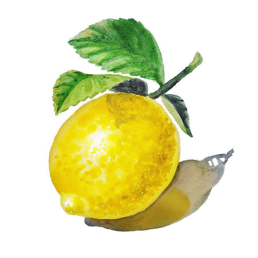 Lemon Painting By Irina Sztukowski