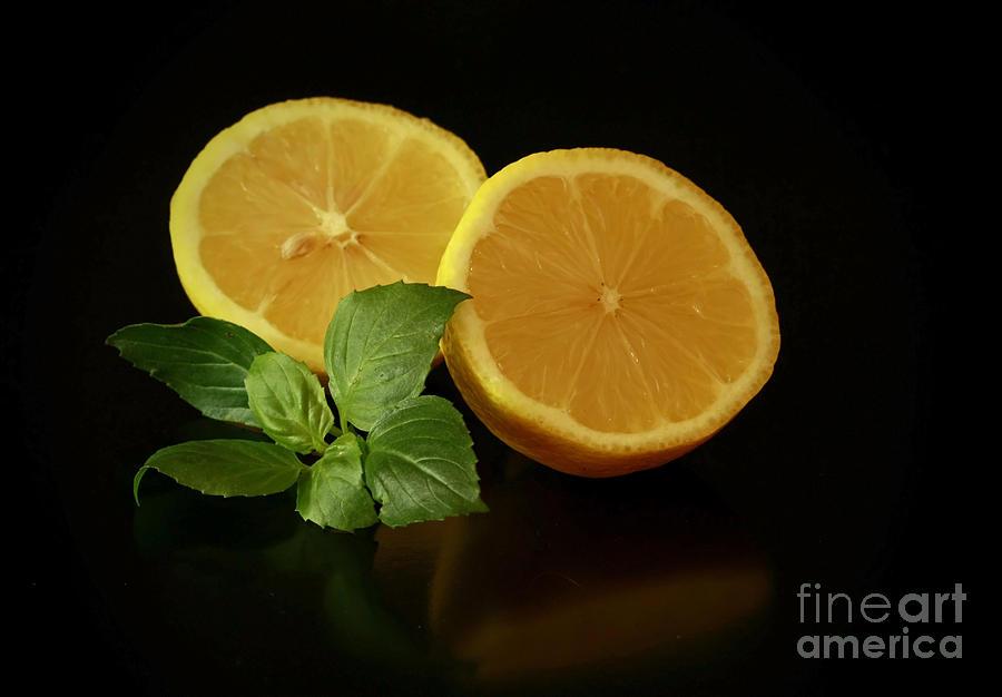 Lemon Splendor Photograph - Lemon Splendor by Inspired Nature Photography Fine Art Photography