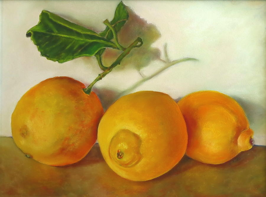 Lemons Pastel - Lemons And Leaves Reflecting by Carol Allen