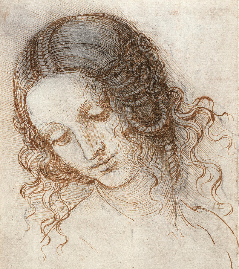 Leonardo Da Vinci Drawing - Leonardo Head Of Woman Drawing by