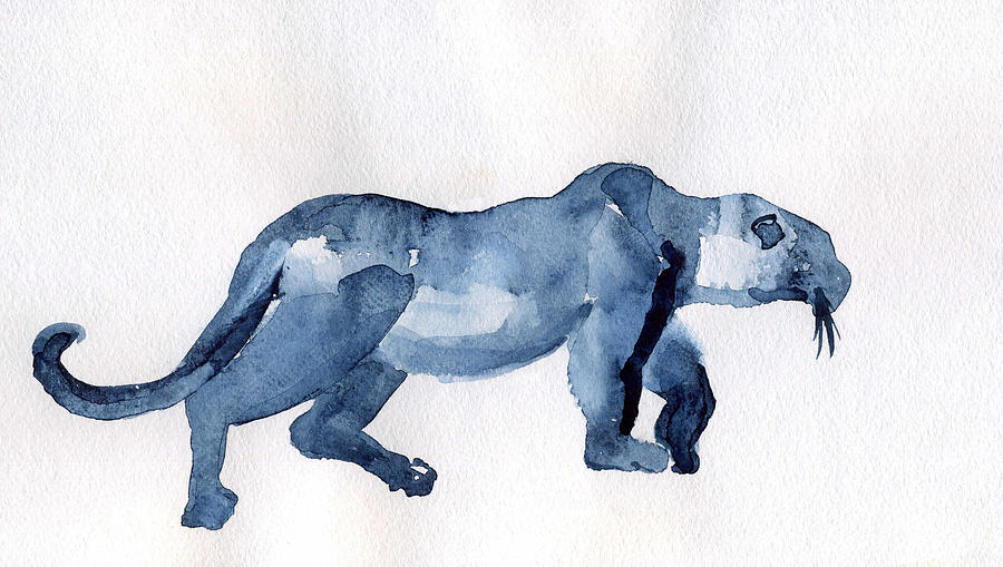 Animal Drawing - Leopard by Lelia Sorokina