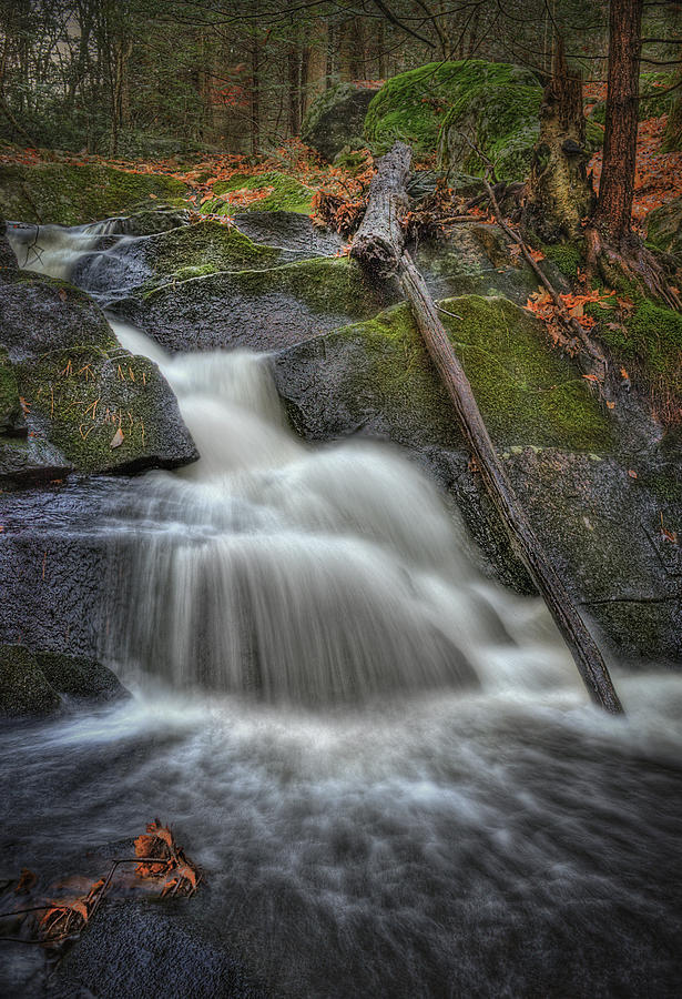 Water Photograph - Let It Flow by Evelina Kremsdorf