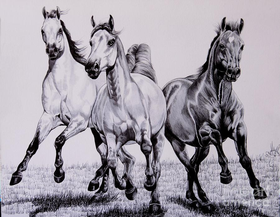 Drawings Drawing - Let The Dinner Bell Ring by Cheryl Poland