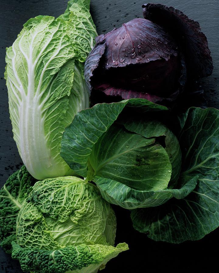 Lettuce Photograph by Romulo Yanes