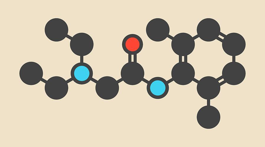 Lidocaine Photograph - Lidocaine Local Anesthetic Drug Molecule by Molekuul