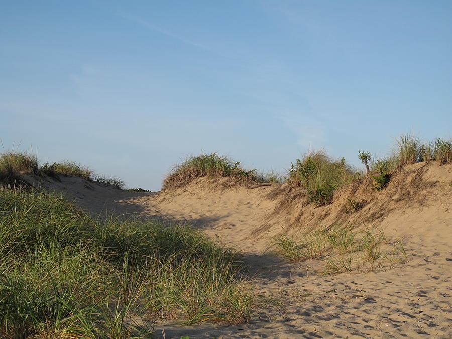 Landscape Photograph - Lieutenant Island Dunes by Barbara McDevitt