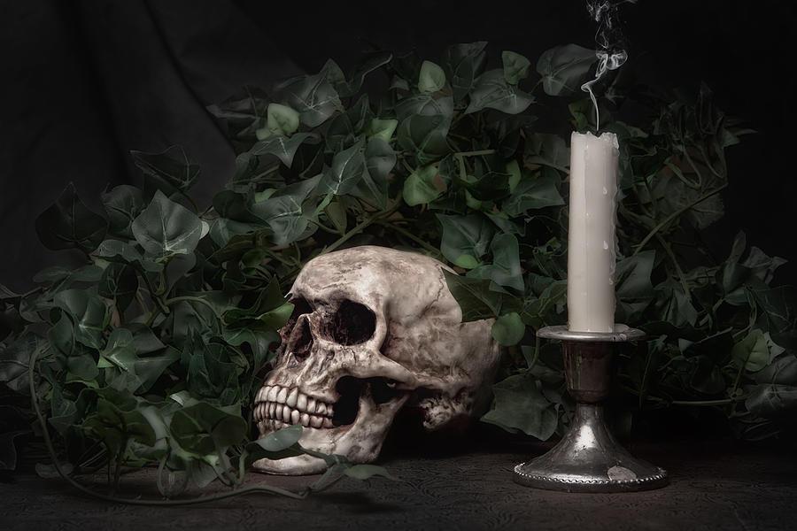 Bone Photograph - Life And Death by Tom Mc Nemar