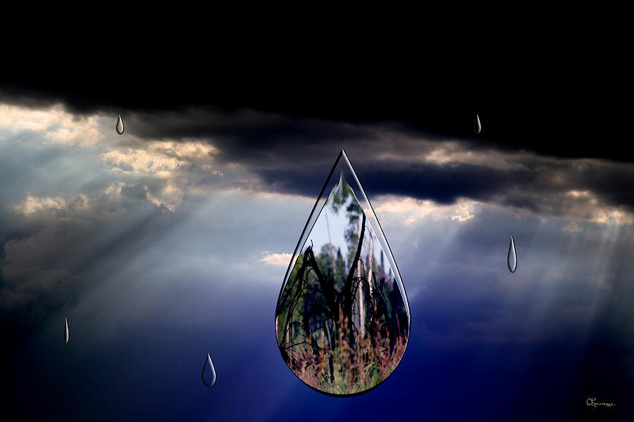 Photo Manipulation Photograph - Life Drop by Andrea Lawrence
