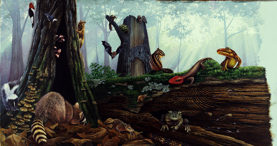 Illustration Painting - Life In A Dead Tree by Chase Studio