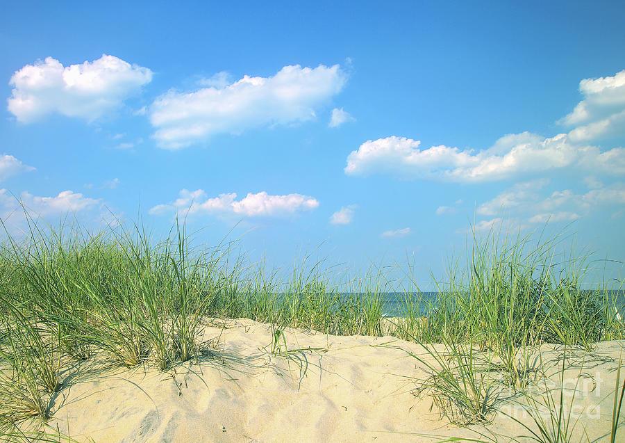 Beach Photograph - Life Is A Beach by Diane Diederich