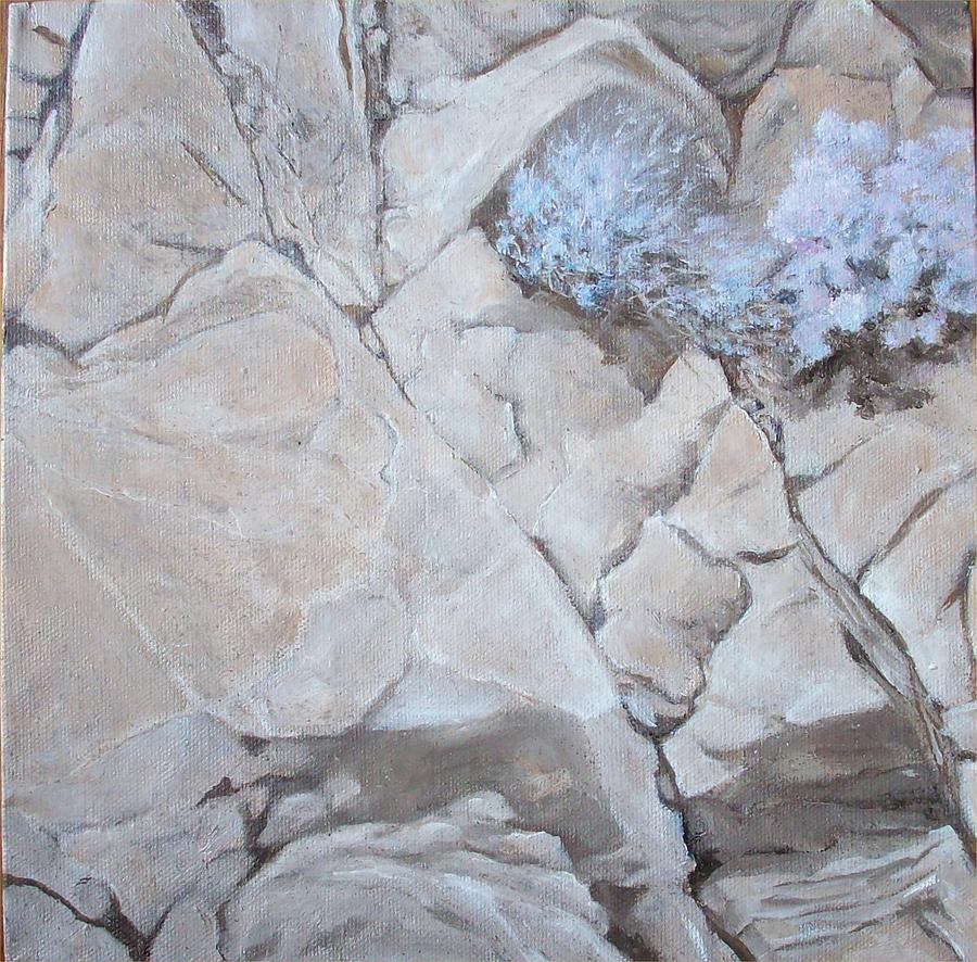 Rocky Mountain Painting - Life On the Rocks by Irene Corey