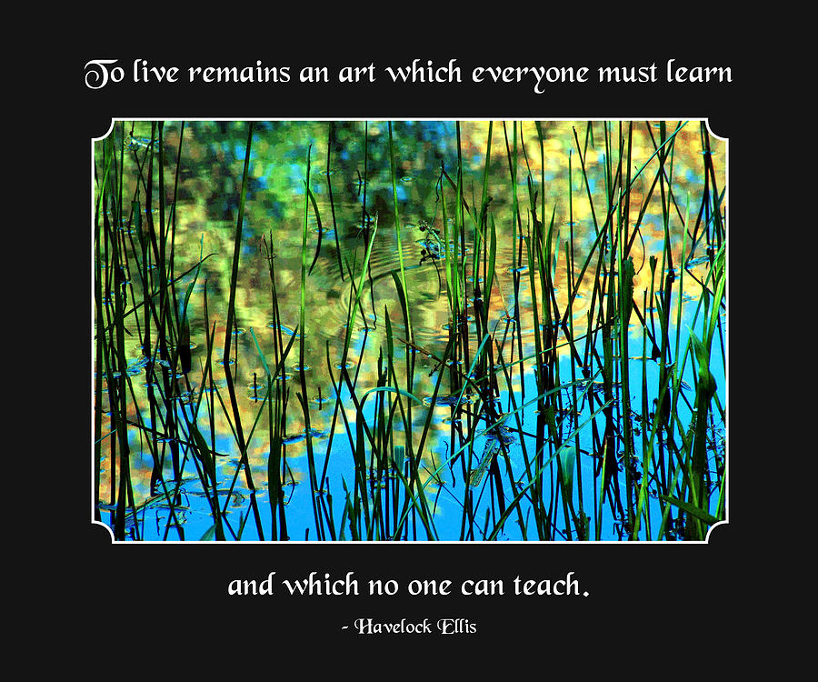 Quotation Photograph - Life Remains An Art by Mike Flynn