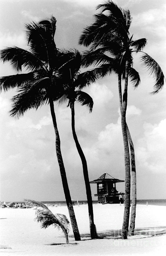 Artistic Photograph - Lifeguard Hut by Gary Gingrich Galleries