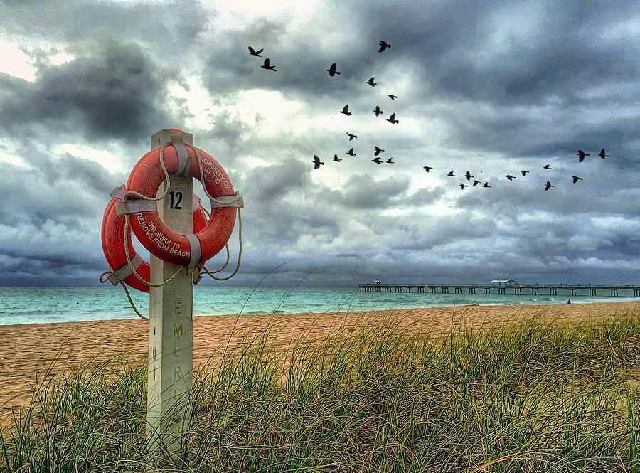 Pier Photograph - Lifesaver by Andrew Royston