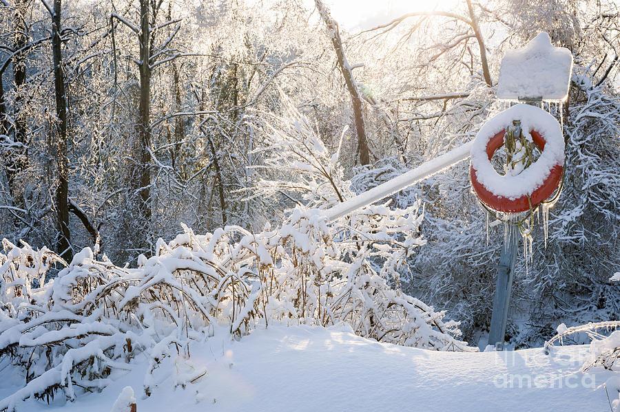 Winter Photograph - Lifesaver In Winter Snow by Elena Elisseeva