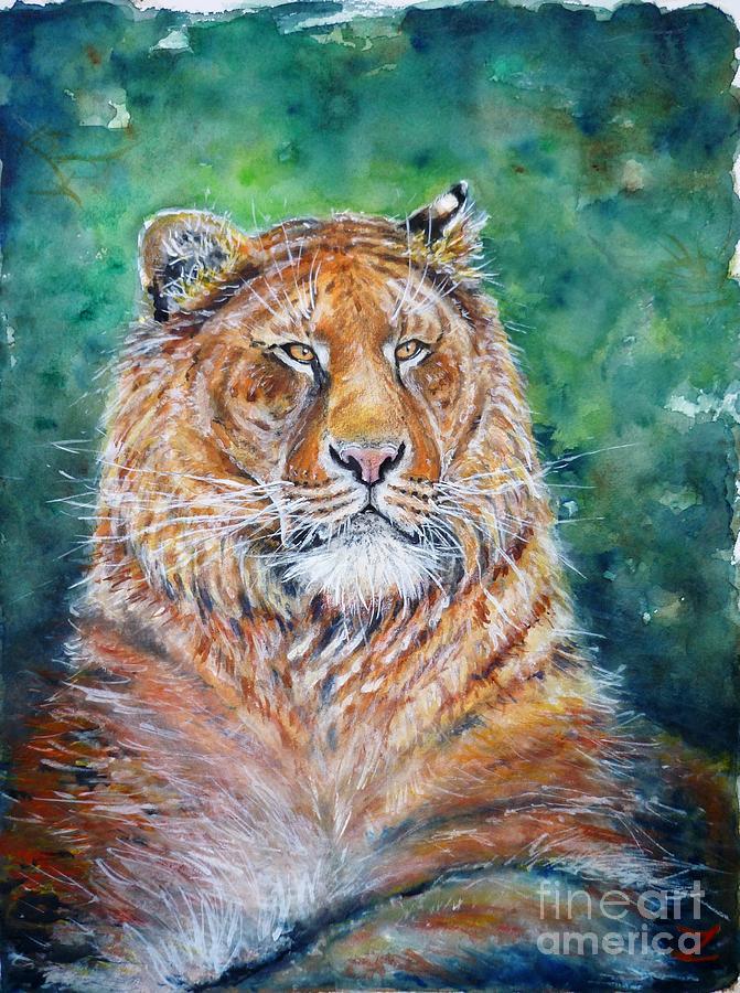 Liger Painting - Liger by Zaira Dzhaubaeva