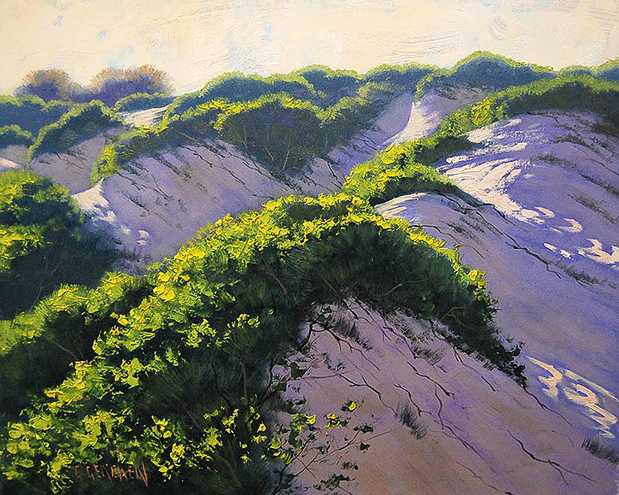 Seascape Painting - Light Across The Dunes by Graham Gercken