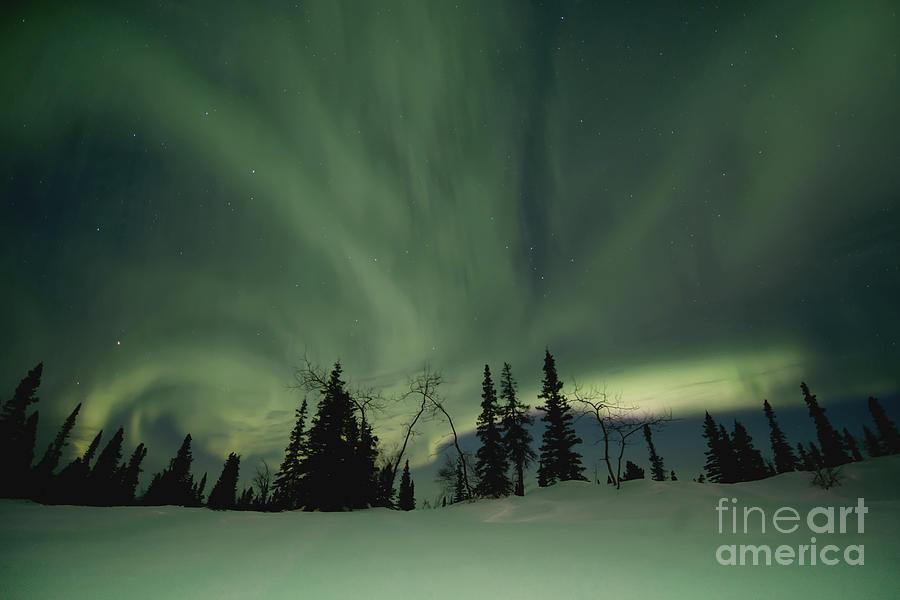 Dawson City Photograph - Light Dancers by Priska Wettstein