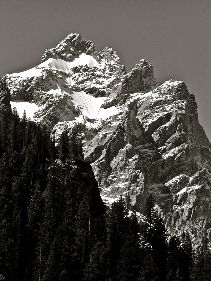 Grand Tetons Photograph - Light Dusting by Gael Graysen