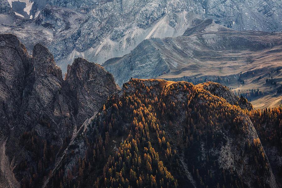 Landscape Photograph - Light Of Autumn by Uschi Hermann
