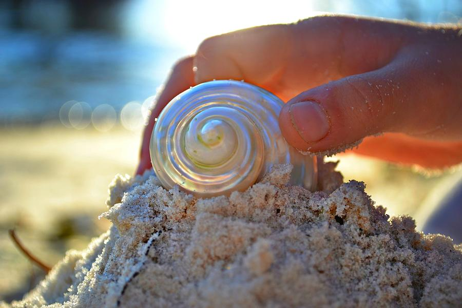 Beach Photograph - Light Of Creation by Laura Fasulo