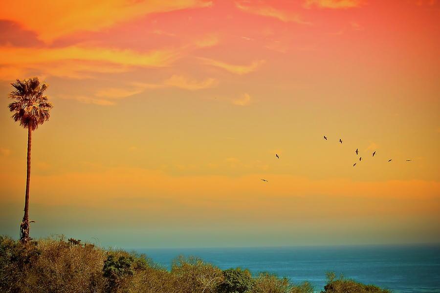 Light Of Sun Setting On  Malibu Beach Photograph by Albert Valles