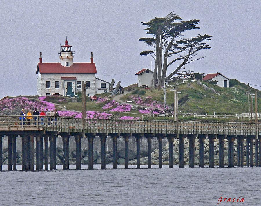 Battery Point Lighthouse Photograph - Lighthouse Beauty by Gracia  Molloy
