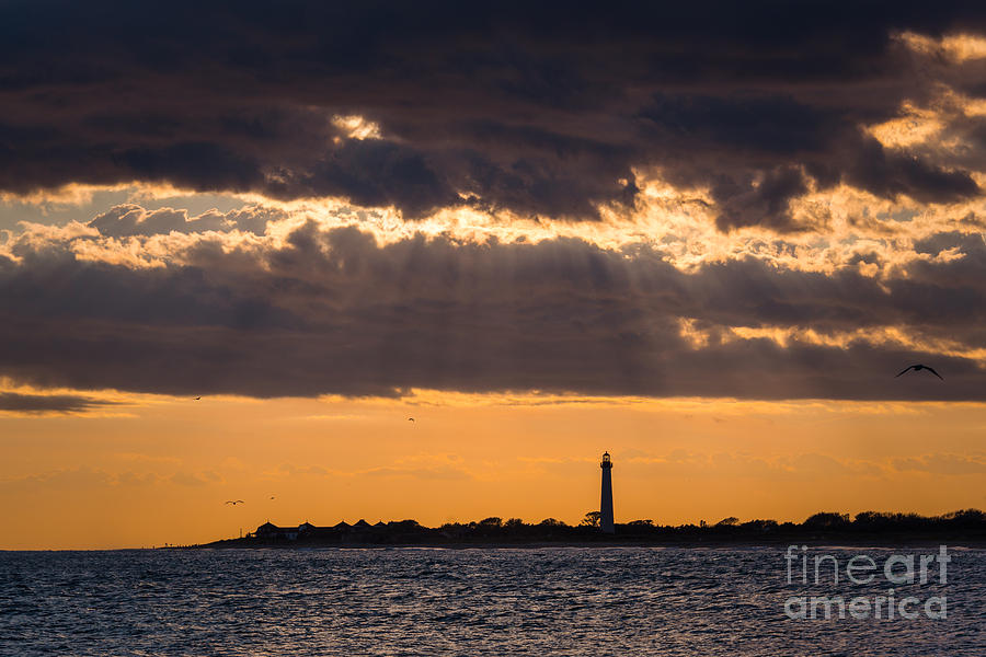 Cape May Photograph - Lighthouse Sun Rays by Michael Ver Sprill