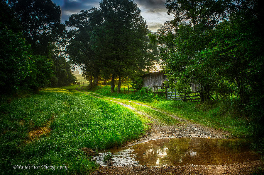 Puddle Photograph - Lighting The Pathway Home by Paul Herrmann