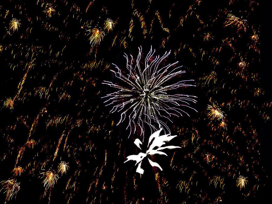 Fireworks Photograph - Lighting Up The Sky by Aimee L Maher Photography and Art Visit ALMGallerydotcom