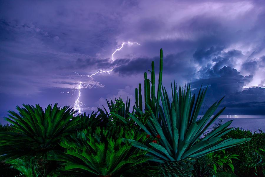 Lightning Photograph - Lightning During Storm by Dmitry Sergeev