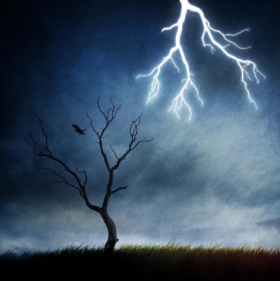 Creative Edit Photograph - Lightning Tree by Sebastien Del Grosso