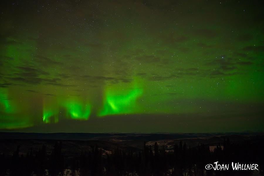 Alaska Photograph - Lights on Fire by Joan Wallner